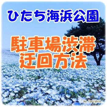 Img_9578_top